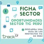 descarga ficha Sector Tic Perú